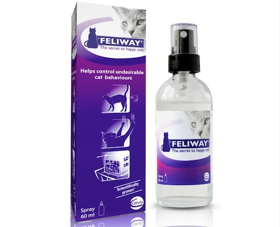 Feliway Spray and box